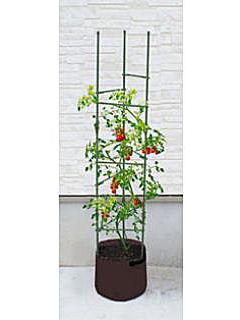 ミニ トマト プランター 支柱
