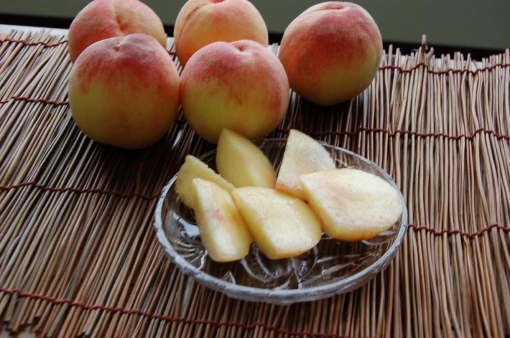 和歌山の桃 早生白鳳 家庭用 約2.8kg(8~12玉入)