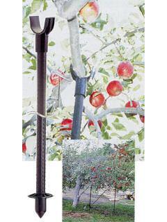 セキスイ 果樹枝受用支柱 支柱径26mm×長さ2,400mm(枝受部口径60mm)