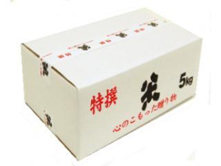 米 贈答用カートン 5kg