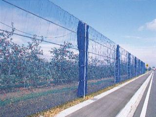 防風網 ブルー 1×50m・2mm目