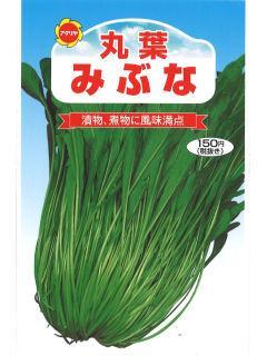 丸葉みぶ菜