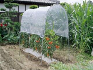 トマトの屋根 NT-18用替えビニール