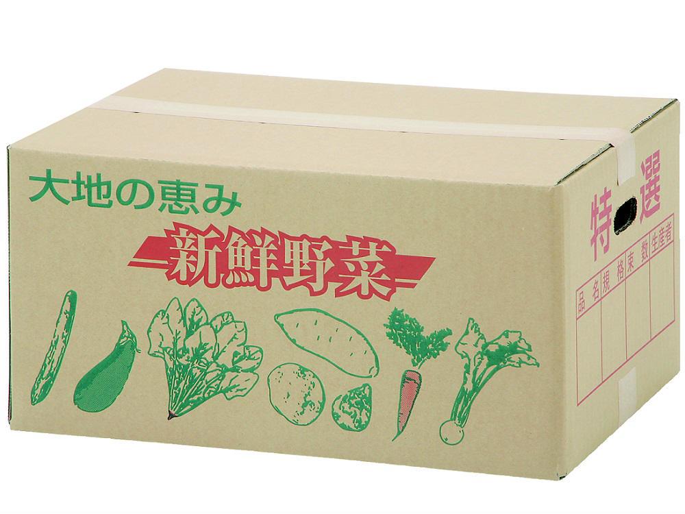 出荷ダンボール 新鮮野菜 (小)