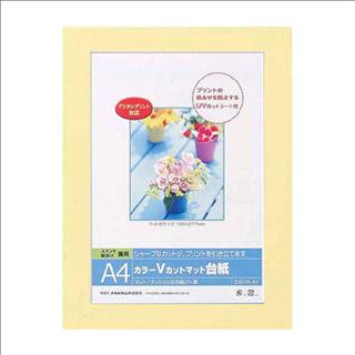 ナカバヤシ Vカットマット台紙A4サイズDGVM-A4-Y