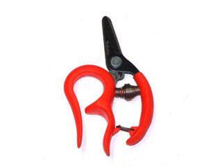 サボテン 両手が使える収穫鋏 直刃 NO1315