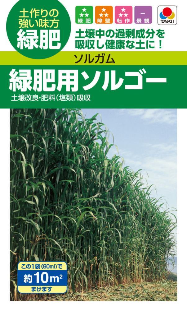 タキイ ソルガム 緑肥用ソルゴー