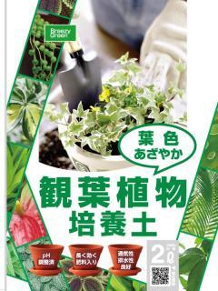 観葉植物の土 2L