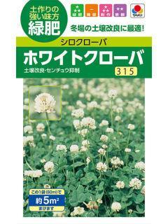 緑肥 ホワイトクローバ