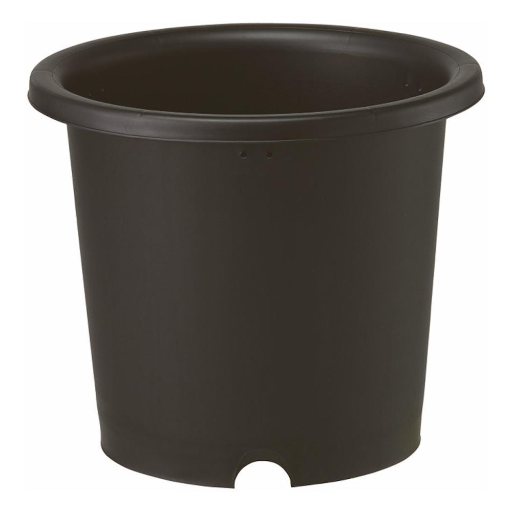 菊鉢 8号 ブラック