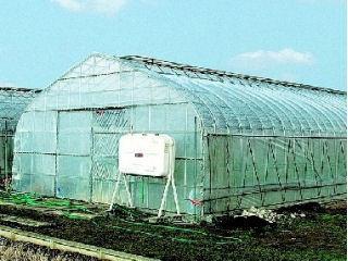 農ビ原反 ENGEI 0.1×150×100