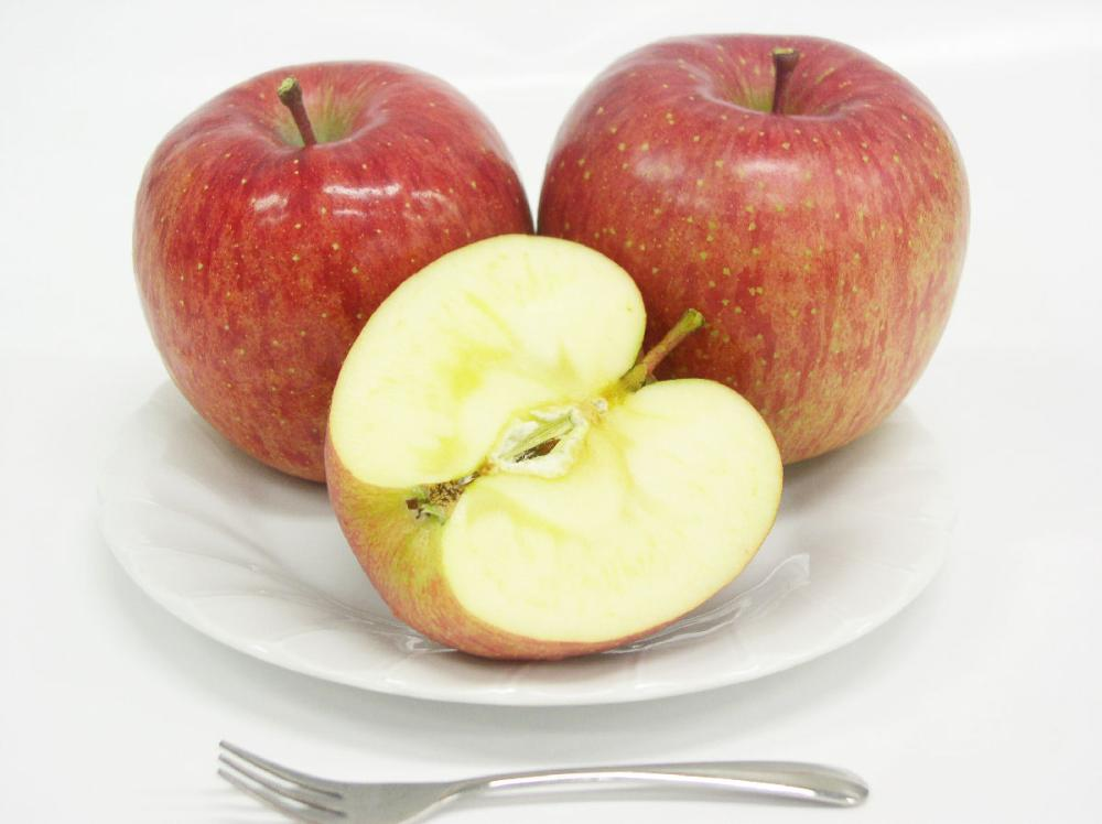 岩手県花巻市産 サンふじりんご 贈答用 約3kg(9~11玉入)