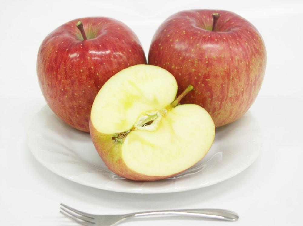 岩手県花巻市産 サンふじりんご 贈答用 約4.5kg(13~14玉入)