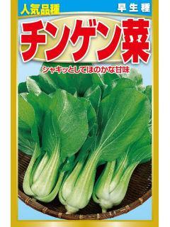 早生種 チンゲン菜