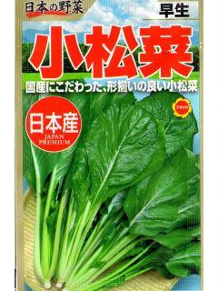 日本の野菜 早生小松菜
