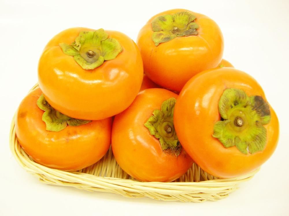 岐阜県産 富有柿 贈答用 Lサイズ 約3.2kg(14個入)