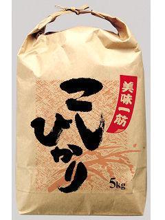 贈答用米袋 美味一筋こしひかり 各サイズ