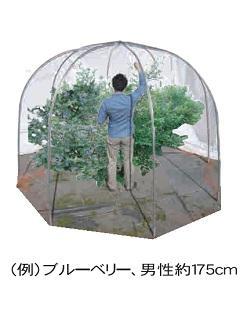 果樹ドーム 400D
