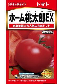 トマト ホーム桃太郎EX