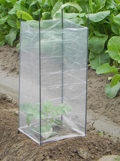 野菜苗ガードセット 3P PEZHー46ー56ZH