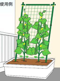 コメリ つる野菜栽培支柱セット 0.6×1.8m
