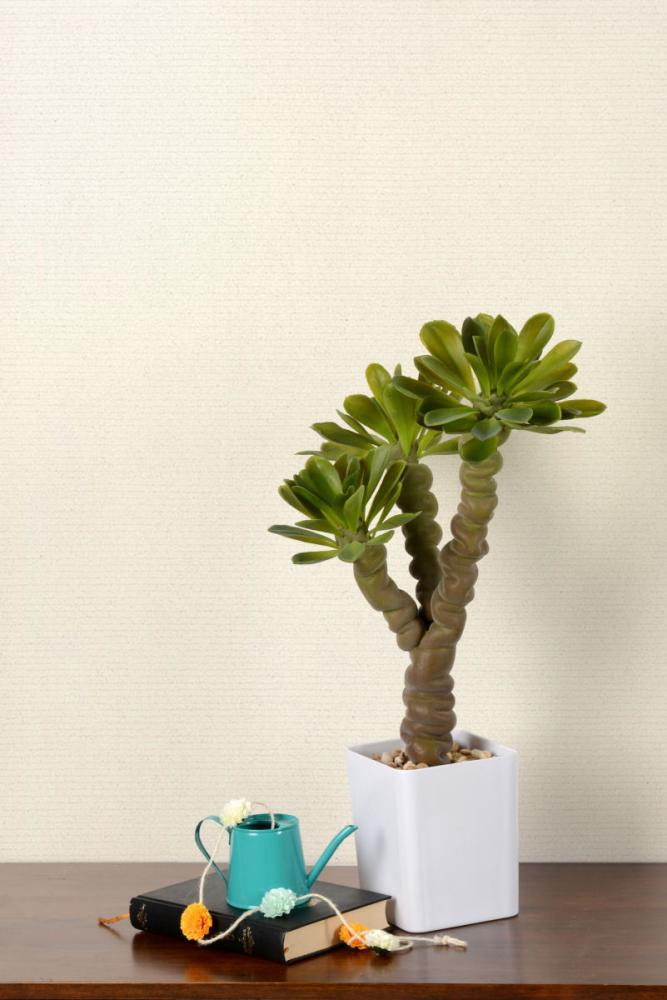 人工多肉植物 モニラ 57cm