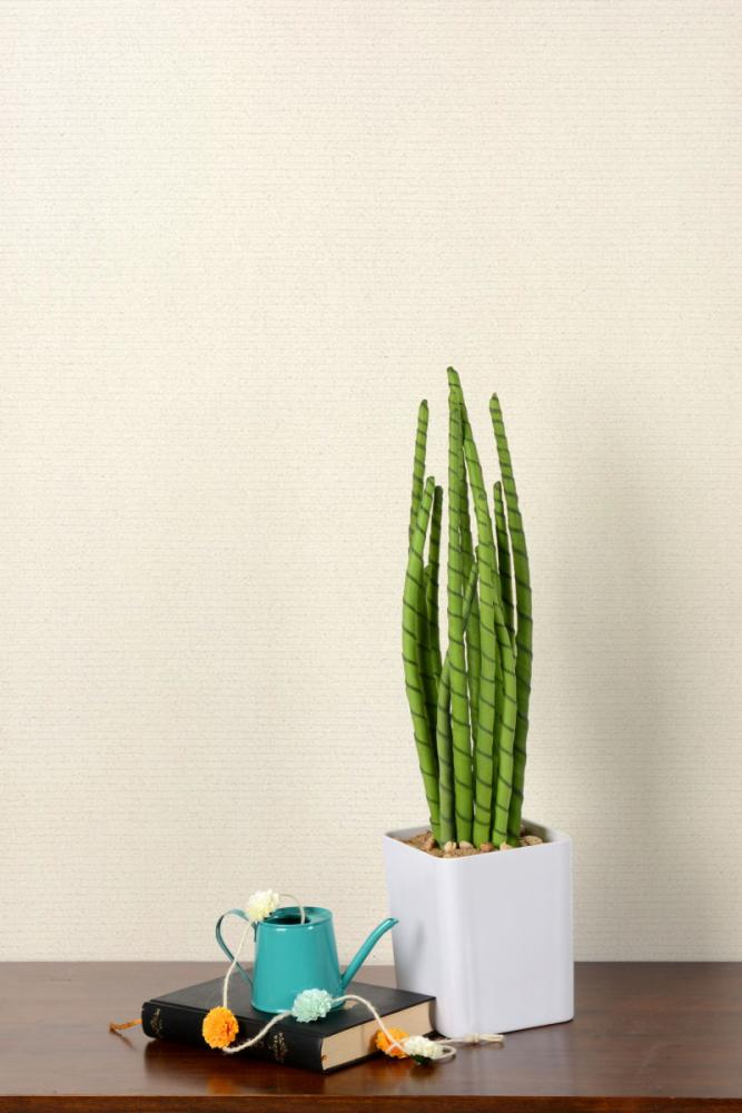 人工多肉植物 スピカ 55cm
