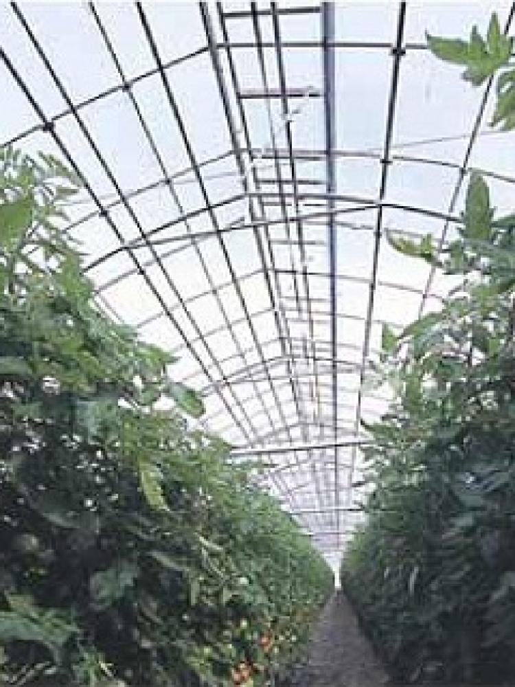 農業用POフィルム ダイヤスターUVカット 厚み0.15mm×巾900cm(オーダー加工品)