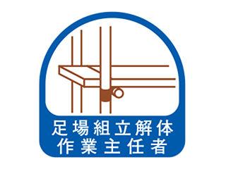TOYO ヘルメット用シール NO.68-022