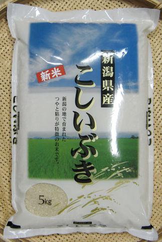 新潟県産 令和3年度 新米 こしいぶき 精米10kg(5kg×2)