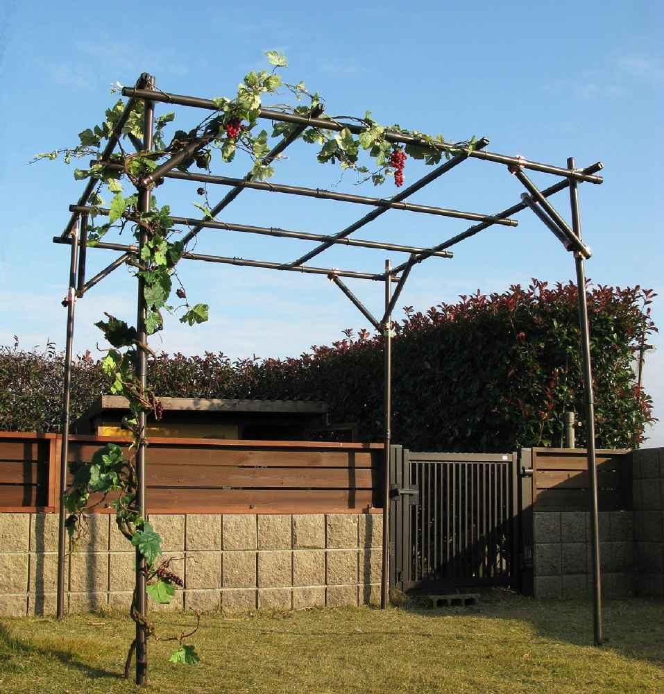 ガーデンアグリパイプ果樹棚セット 2m×2m×2m