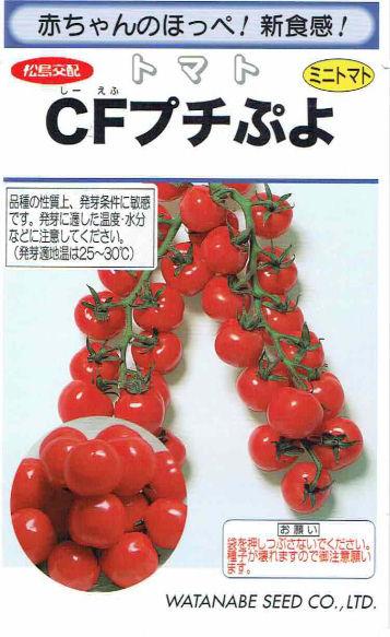 トマト プチぷよ