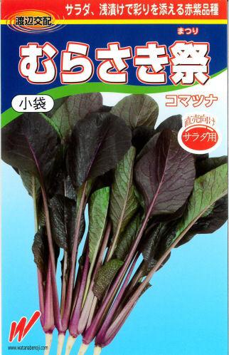 小松菜 むらさき祭