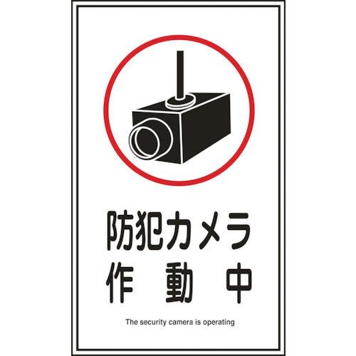 緑十字 イラストステッカー標識 防犯カメラ作動中 200×120mm 10枚組_
