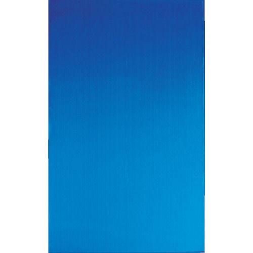 TRUSCO ダンボールプラスチック養生シート 1820X910X2.5 ブルー_