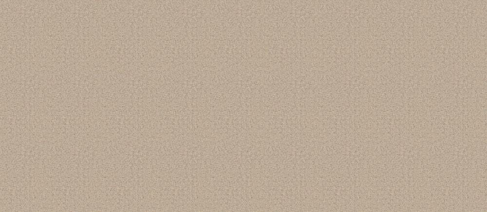 東リ 防滑性ビニル床シート NS800 NS815