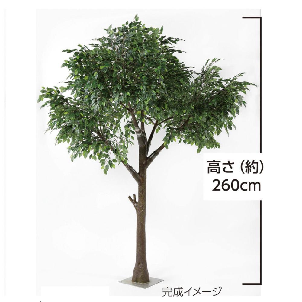 【大型人工観葉植物】シンボルツリー ベンジャミン 高さ2.6m
