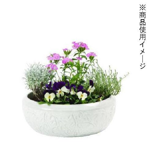 和風平鉢 リーフ 各サイズ