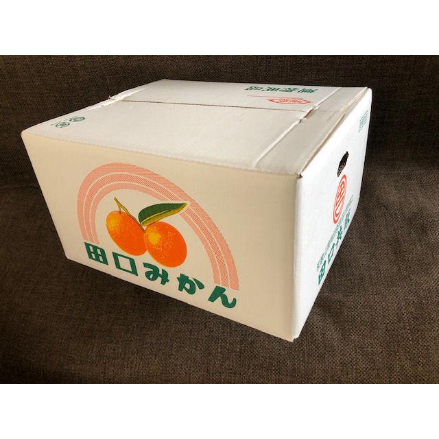 和歌山県産 田口共販 有田みかん 家庭用 S~Lサイズ約10kg箱
