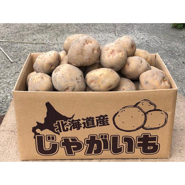 北海道産 バレイショ(キタアカリ) LM 10kg