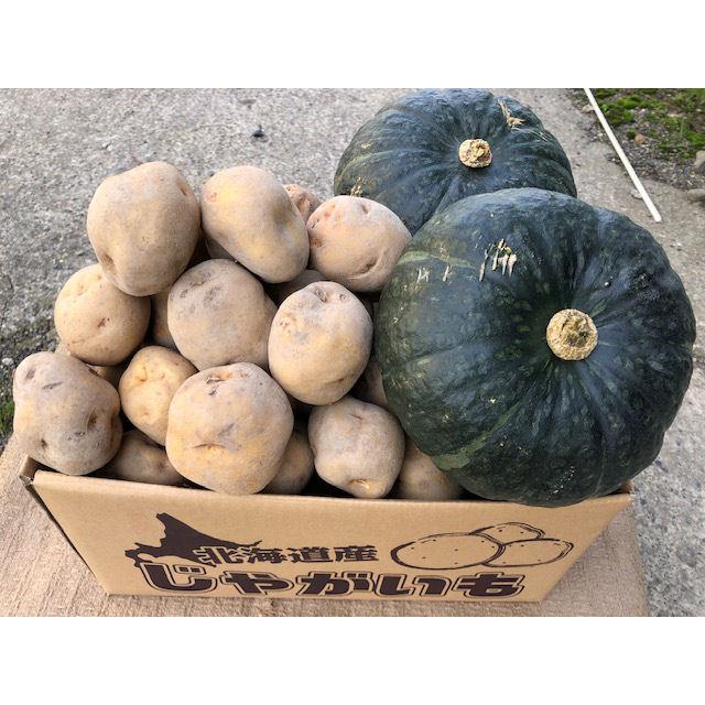 北海道産 キタアカリとかぼちゃのセット L 約10kg