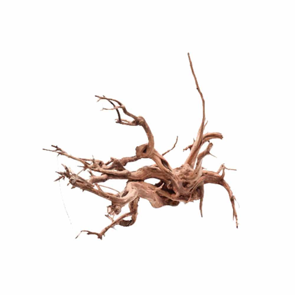 カミハタ ベトナム産 枝流木 Lサイズ