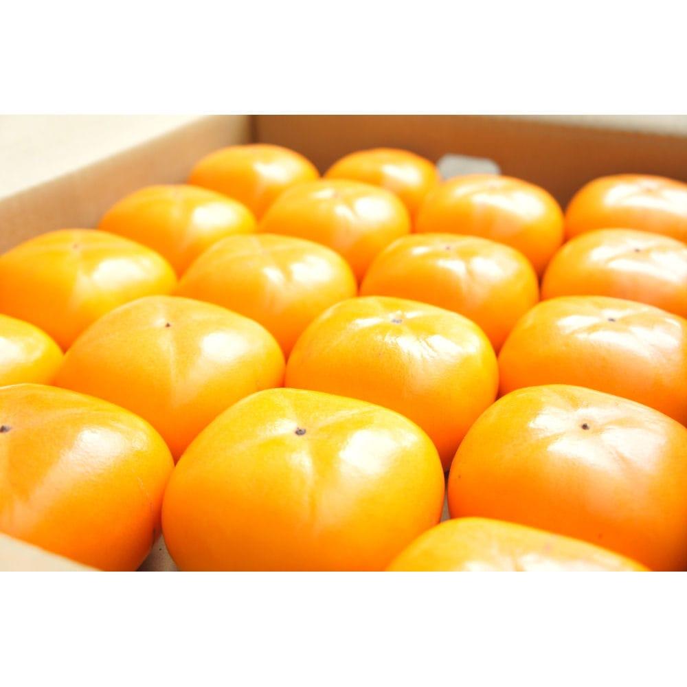 新潟県産 おけさ柿 秀品 約7.5kg箱 2Lサイズ 32玉入