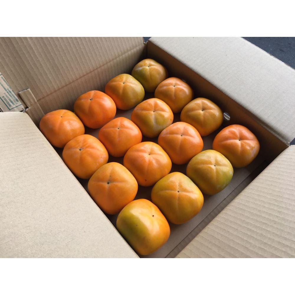 新潟県新津産 おけさ柿 秀品 約4kg箱 2Lサイズ 16玉入