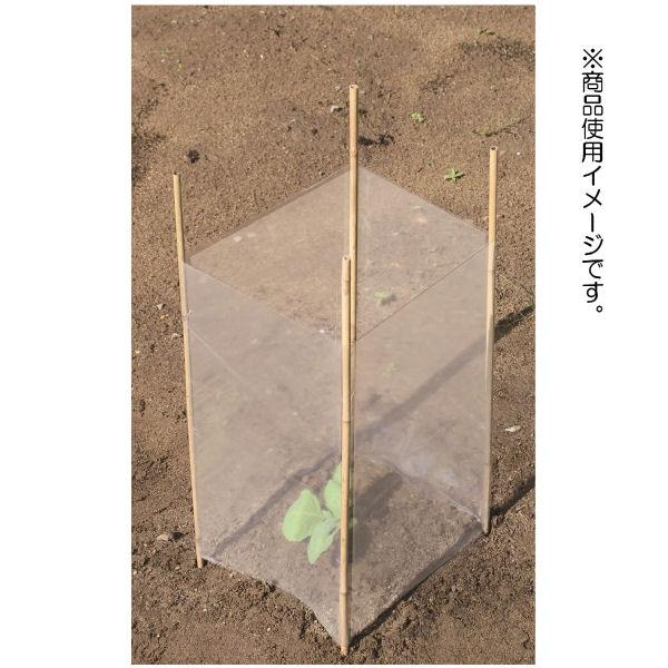 コメリ 自然竹 菜苗ガードセット