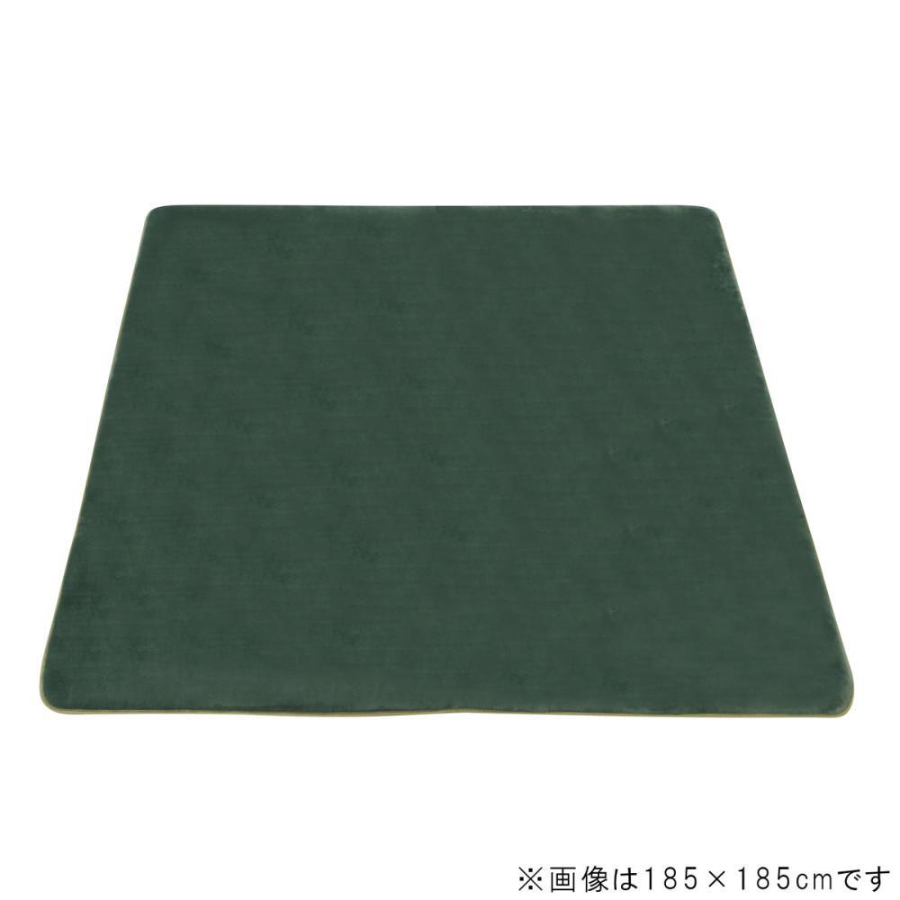 アテーナライフ 抗菌防臭 極厚リビングラグ アドヴァンス ダークグリーン 約3畳 200×240cm