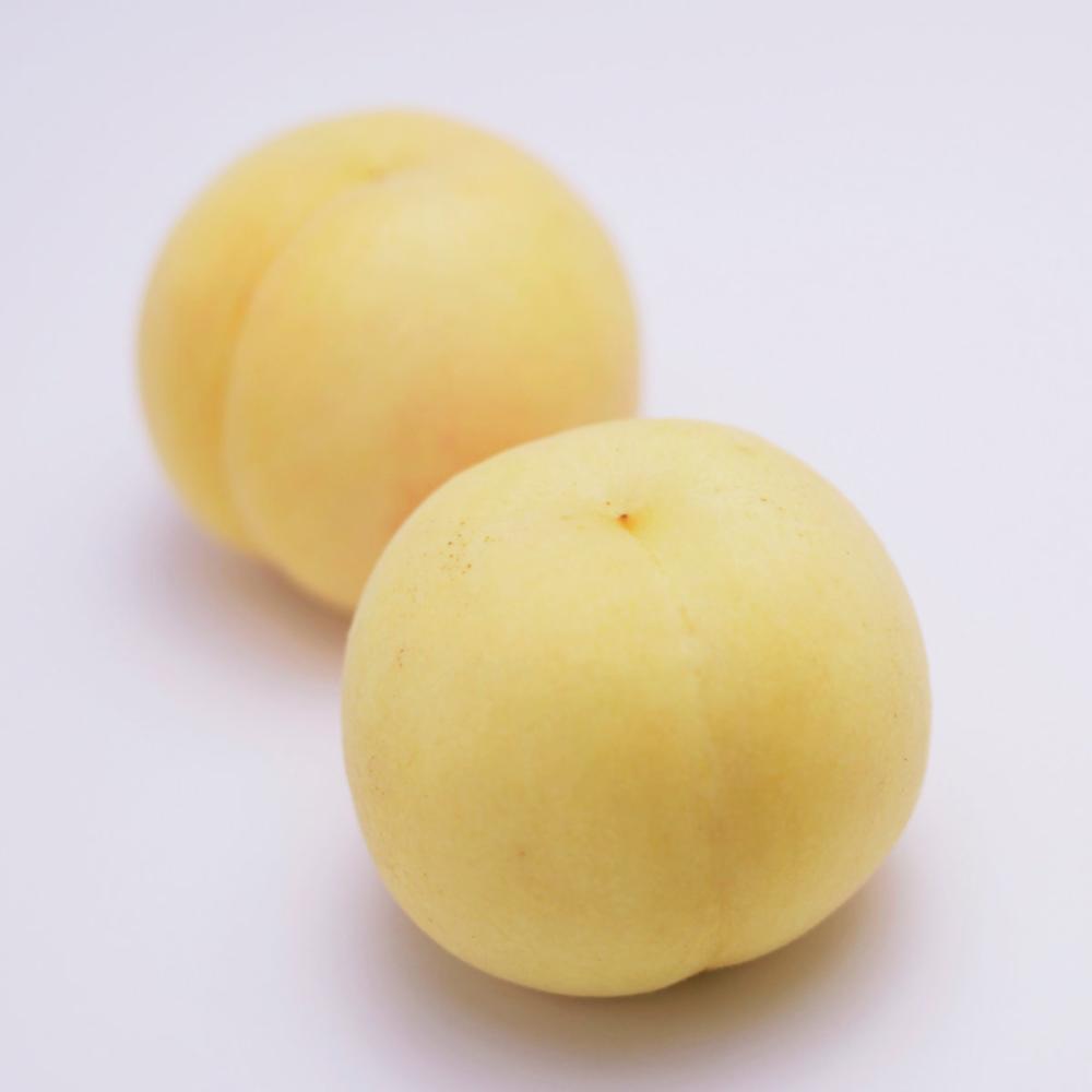 岡山県産 冬桃 約1.5kg(8玉)
