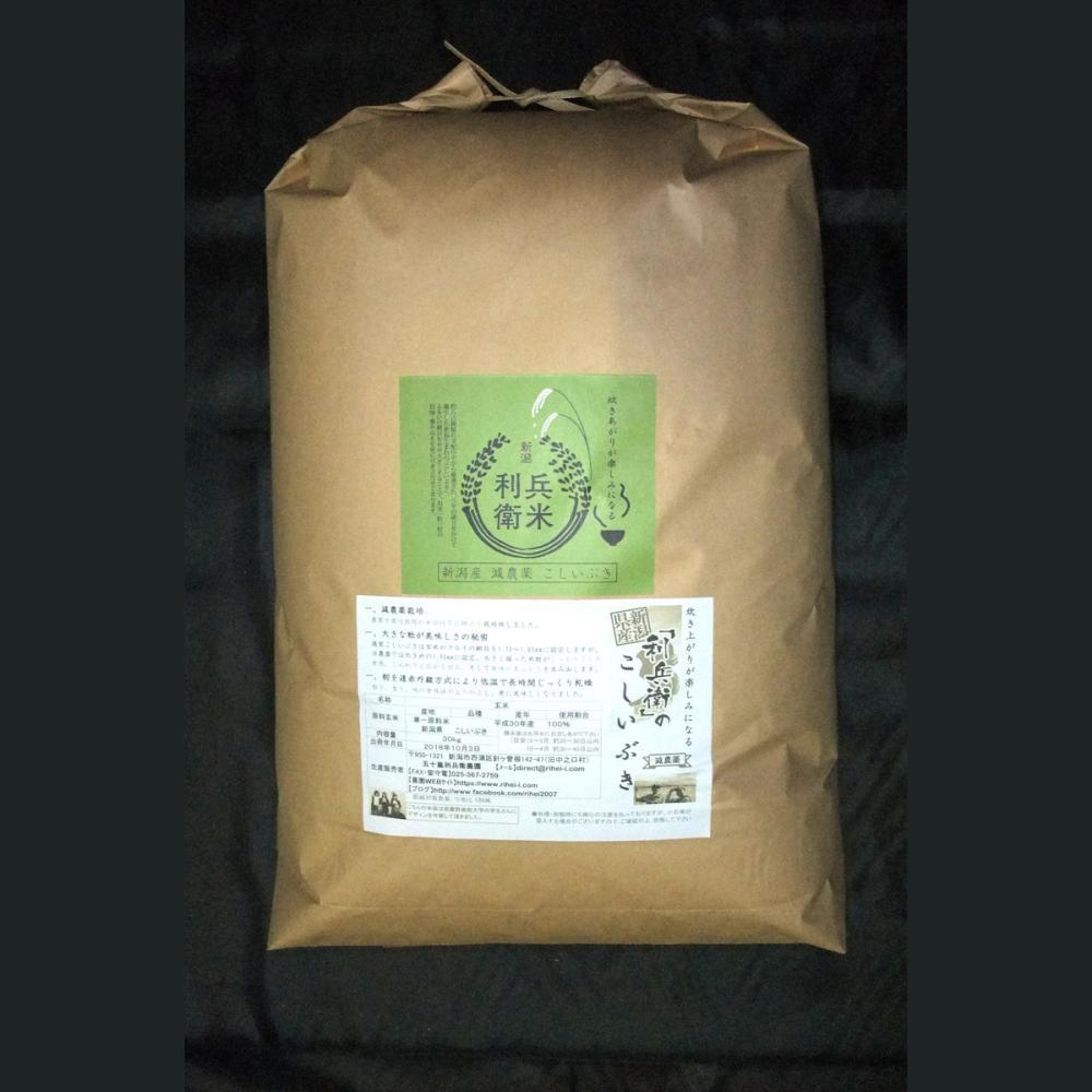 【新米予約】新潟県産 令和3年度 玄米20kg(10kg×2) ★炊き上がりが楽しみになる利兵衛の「こしいぶき」(減農薬)