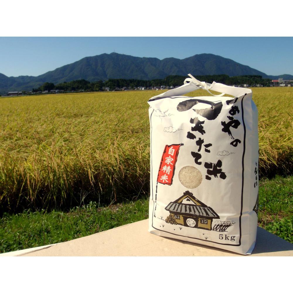 令和3年度 新米 新潟県弥彦村産 石井農園のこだわりコシヒカリ 精米5kg